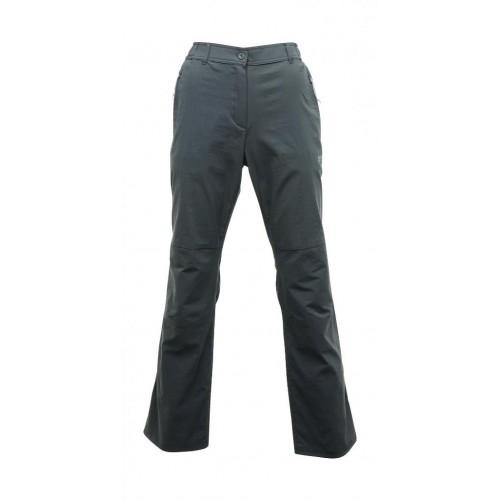 Regatta Fellwalk Str Trs Trekking Kadın Pantolon-GRİ