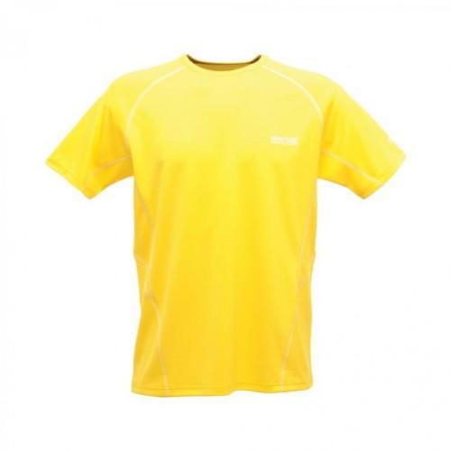 Regatta Kendrik Erkek T-Shirt-SARI